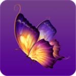 蝴蝶视频app污免费版