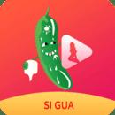 丝瓜视频app成版